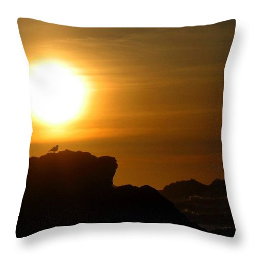 Bandon Throw Pillow featuring the photograph Bandon 30 by Will Borden