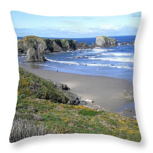 Bandon Throw Pillow featuring the photograph Bandon 8 by Will Borden