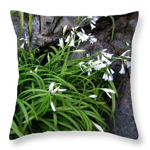 Bandon Throw Pillow featuring the photograph Bandon 9 by Will Borden