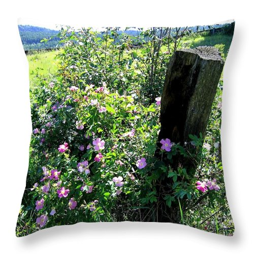 Wild Roses Throw Pillow featuring the photograph Barbed Wire And Roses by Will Borden