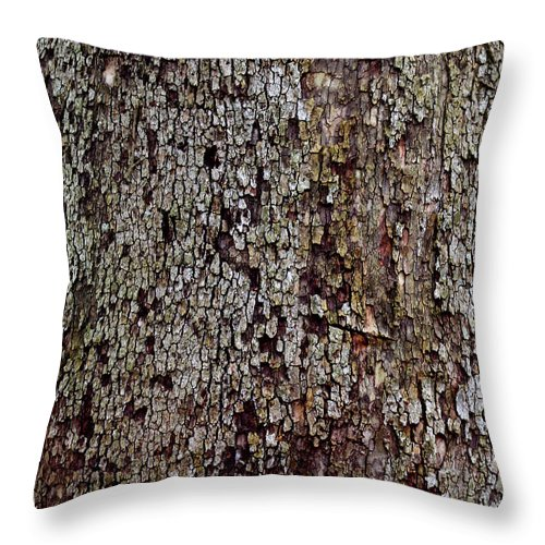 Natural Throw Pillow featuring the photograph Bark by Karen Adams
