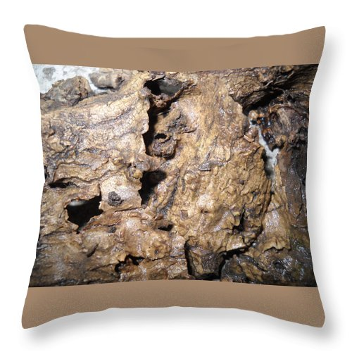 Bark Of Stem-root Throw Pillow featuring the mixed media Bark-vision On Abstraction Theme by Basant Soni
