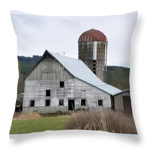Digital Photography Throw Pillow featuring the photograph Barn And Silo by Laurie Kidd