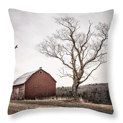 Barns Throw Pillow featuring the photograph barn and tree - New York State by Gary Heller