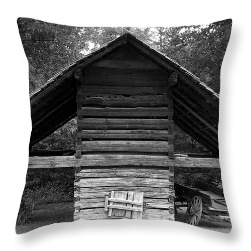 Barn Throw Pillow featuring the photograph Barn And Wagon by David Lee Thompson
