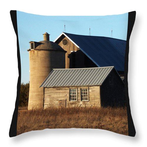 Barn Throw Pillow featuring the photograph Barn At 57 And Q by Tim Nyberg