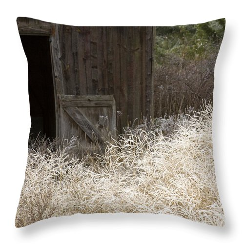 Barn Throw Pillow featuring the photograph Barn Door by Idaho Scenic Images Linda Lantzy