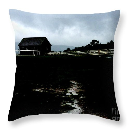 Barn Throw Pillow featuring the photograph Barn Storming by Cheryl Kurman