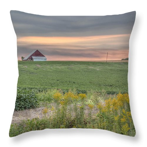 Sky Throw Pillow featuring the photograph Barn On The Horizon by Larry Braun