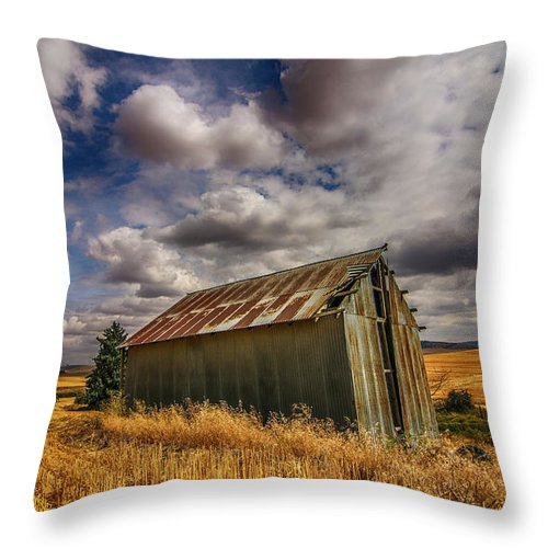Barn Throw Pillow featuring the photograph Barn Solitude by Dan Earle