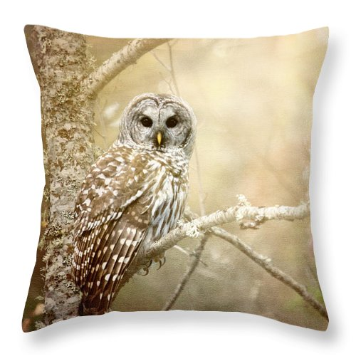 Barred Owl Throw Pillow featuring the photograph Barred Owl - Woodland Fellow by Beve Brown-Clark Photography