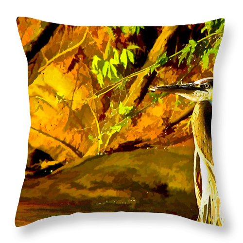 Bird Throw Pillow featuring the digital art Basking Sunset by Ches Black