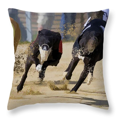 Greyhound Throw Pillow featuring the painting Battle Of The Racing Greyhounds At The Track by Elaine Plesser