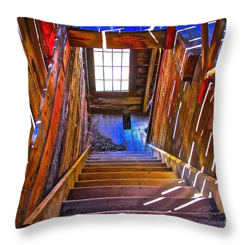 Aspen Throw Pillow featuring the photograph Be Careful by Elisabeth Derichs