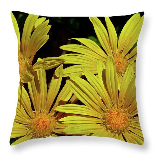 Flowers Throw Pillow featuring the photograph Be Happy by Diana Hatcher