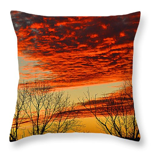 Berry Throw Pillow featuring the photograph Be Still And Know by Diane E Berry