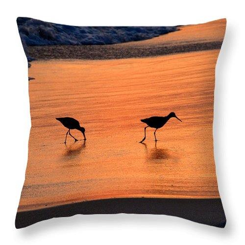 Beach Throw Pillow featuring the photograph Beach Couple by David Lee Thompson