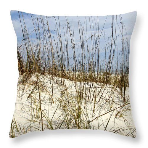 Beach Throw Pillow featuring the photograph Beach Dunes by David Lee Thompson