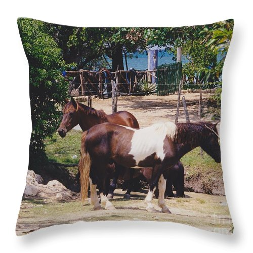 Horses Throw Pillow featuring the photograph Beach Horses by Michelle Powell