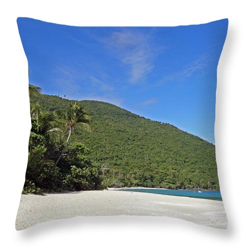 Ocean Throw Pillow featuring the photograph Beach by Kimberly Mohlenhoff