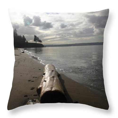 Seascape Throw Pillow featuring the photograph Beach Logs by Mary Haber