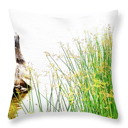 Beach Throw Pillow featuring the photograph Beach Love by Traci Cottingham