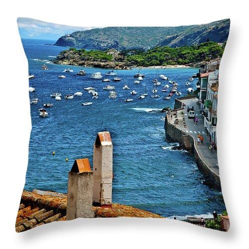Beach Overlook Throw Pillow featuring the photograph Beach Overlook by Harry Spitz