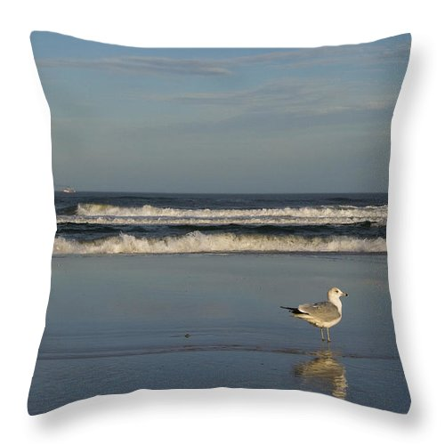 Sea Ocean Gull Bird Beach Reflection Water Wave Sky Throw Pillow featuring the photograph Beach Patrol by Andrei Shliakhau