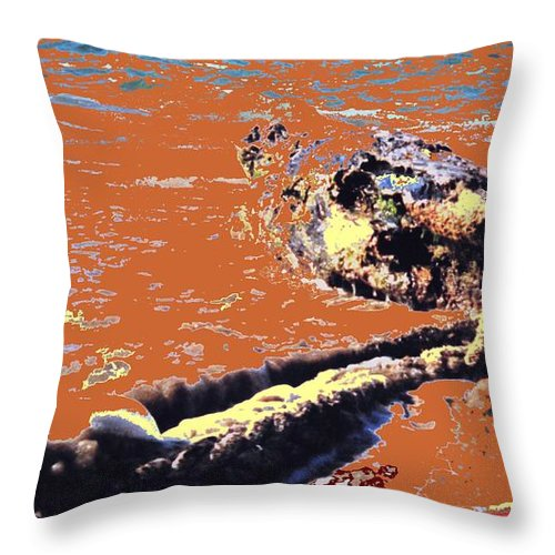 Rope Throw Pillow featuring the photograph Beach Rope by Ian MacDonald