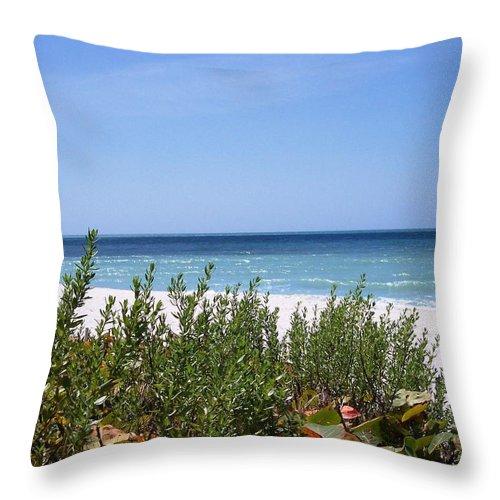 Beach Ocean Foliage Plants Nature Florida Throw Pillow featuring the photograph Beach Scene 6 by Anna Villarreal Garbis