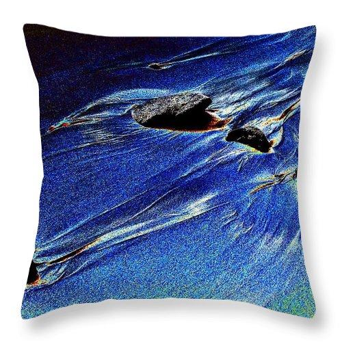 Beach Throw Pillow featuring the photograph Beach Sinuosity by Tim Allen