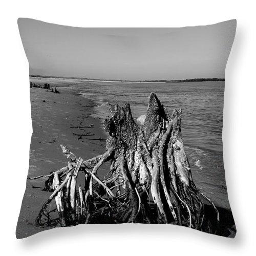Beach Stump Throw Pillow featuring the photograph Beach Stump by Melody Jones