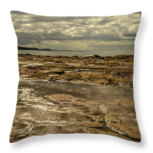 Landscape Throw Pillow featuring the photograph Beach Syd02 by Werner Padarin
