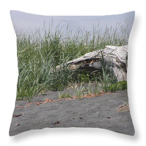 Tree Throw Pillow featuring the photograph Beach Tree by Frederic Durville