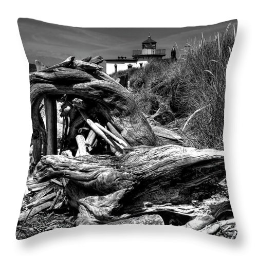 Tree Stump Throw Pillow featuring the photograph Beached Tree Stump by David Patterson
