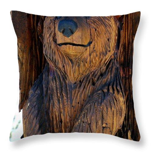 Usa Throw Pillow featuring the photograph Bear Art by LeeAnn McLaneGoetz McLaneGoetzStudioLLCcom