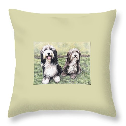 Dogs Throw Pillow featuring the drawing Bearded Collies by Nicole Zeug