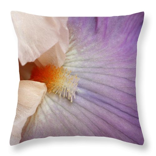 Iris Throw Pillow featuring the photograph Bearded Iris by Marna Edwards Flavell
