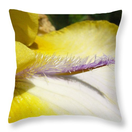 Bearded Iris Throw Pillow featuring the photograph Bearded Lady by Peggy King