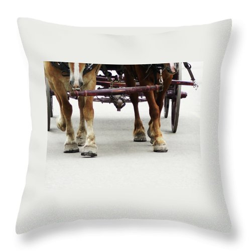 Horse Throw Pillow featuring the photograph Beast Of Burden by Linda Shafer