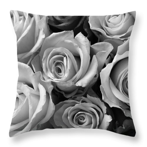 Rose Throw Pillow featuring the photograph Beauties In Black And White by Csilla Maria Miklos