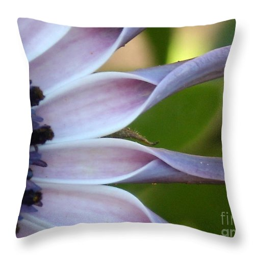 Floral Throw Pillow featuring the photograph Beautiful 002 by Line Gagne