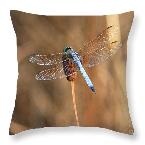 Dragonfly Throw Pillow featuring the photograph Beautiful Broken Wing by Carol Groenen