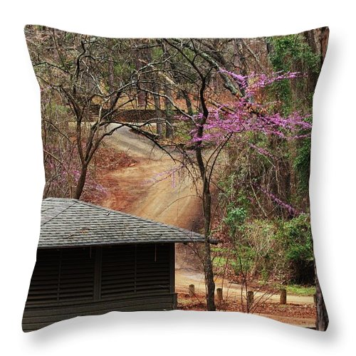 Nature Photograph Throw Pillow featuring the photograph Beautiful Escape by Kim Henderson