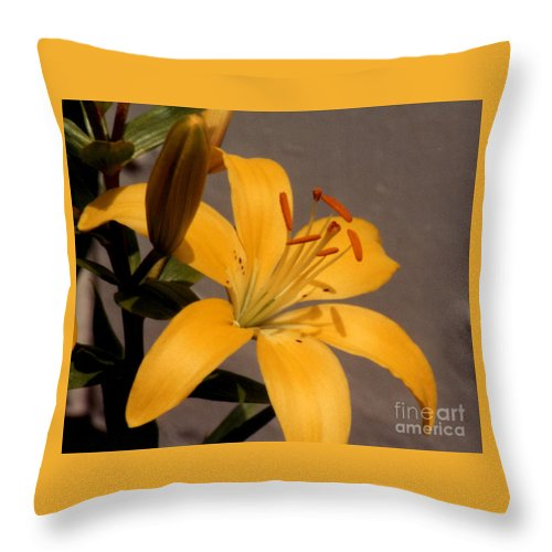 Beautiful Flower Prints Throw Pillow featuring the photograph Beautiful Flower by Ruth Housley