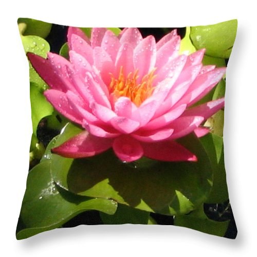 Nature Throw Pillow featuring the photograph Beautiful by Line Gagne