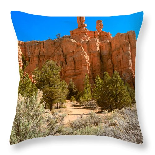 Red Canyon Throw Pillow featuring the photograph Beautiful Red Canyon by Robert Bales
