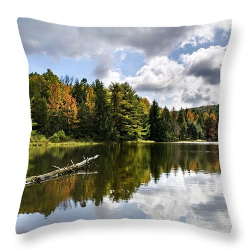 Fall Throw Pillow featuring the photograph Beautiful Reflections Landscape by Christina Rollo