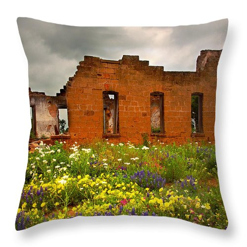 Landscape Throw Pillow featuring the photograph Beauty And Ashes by Jon Holiday