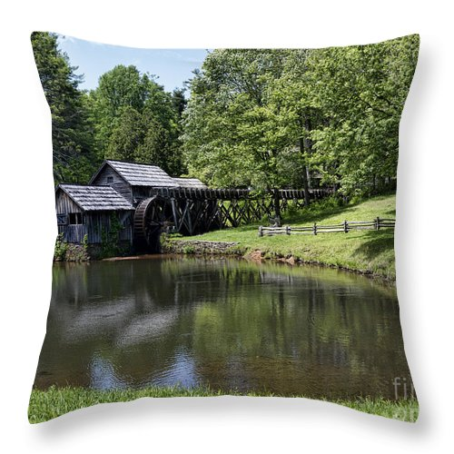 Mabry Throw Pillow featuring the photograph Beauty And Peace by Brenda Kean